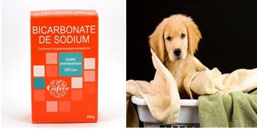 comment utiliser le bicarbonate de soude pour nos animaux domestiques french pets lovers. Black Bedroom Furniture Sets. Home Design Ideas