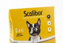 scalibor-collier
